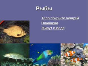 Рыбы Тело покрыто чешуей Плавники Живут в воде