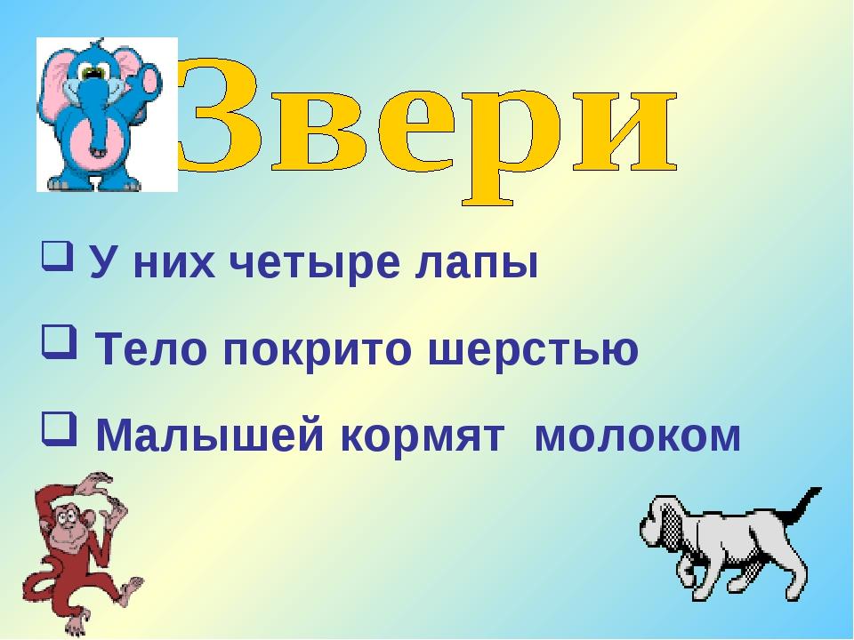 У них четыре лапы Тело покрито шерстью Малышей кормят молоком
