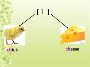 [ ʧ ] chick cheese