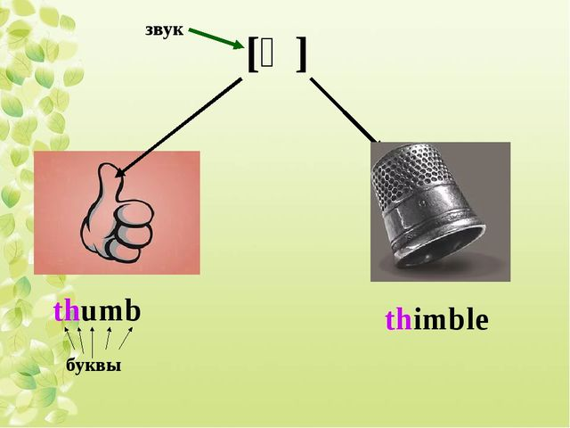 [Ɵ] thumb thimble звук буквы
