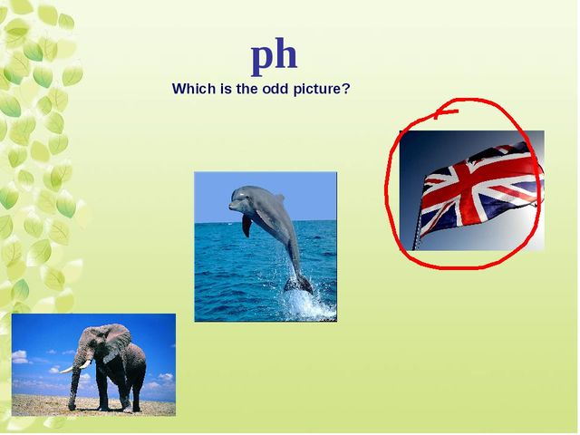 ph Which is the odd picture?
