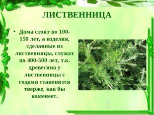 ЛИСТВЕННИЦА Дома стоят по 100-150 лет, а изделия, сделанные из лиственницы, с