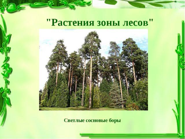 """""""Растения зоны лесов"""" Светлые сосновые боры"""