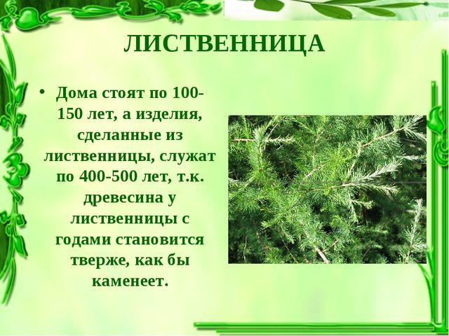 ЛИСТВЕННИЦА Дома стоят по 100-150 лет, а изделия, сделанные из лиственницы, с...