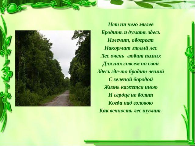 Нет ни чего милее Бродить и думать здесь Излечит, обогреет Накормит милый лес...