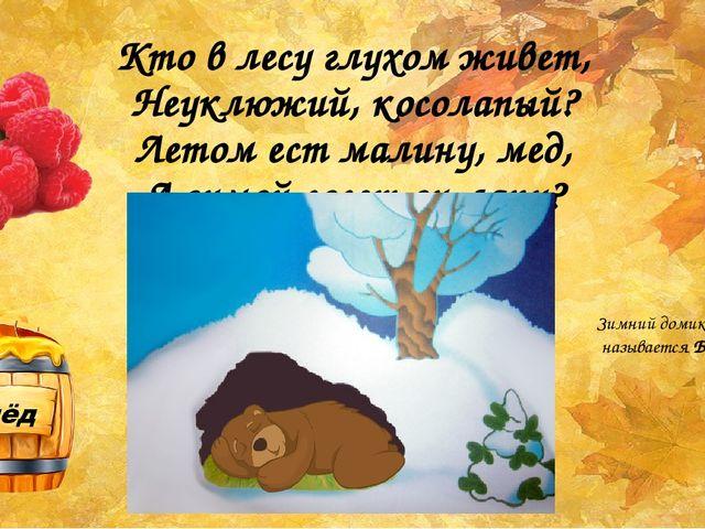 Кто в лесу глухом живет, Неуклюжий, косолапый? Летом ест малину, мед, А зимой...