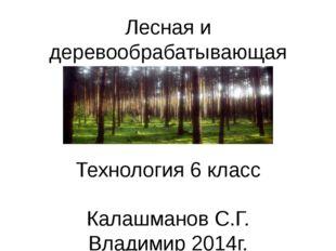 Лесная и деревообрабатывающая промышленность Технология 6 класс Калашманов С.