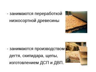 - занимаются переработкой низкосортной древесины - занимаются производством