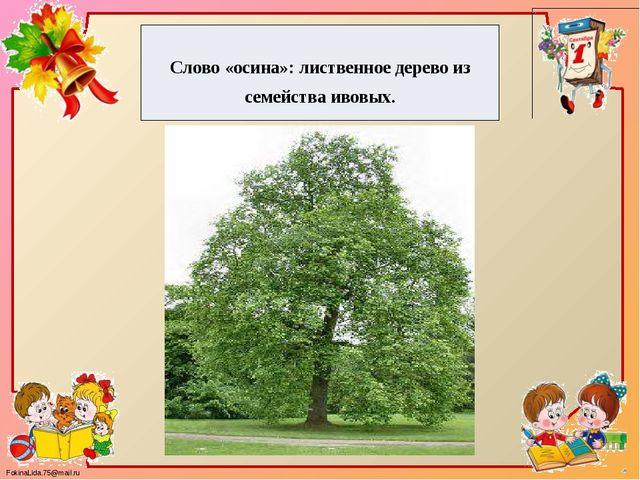 Слово «осина»: лиственное дерево из семейства ивовых. FokinaLida.75@mail.ru