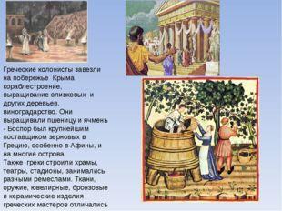 Греческие колонисты завезли на побережье Крыма кораблестроение, выращивание