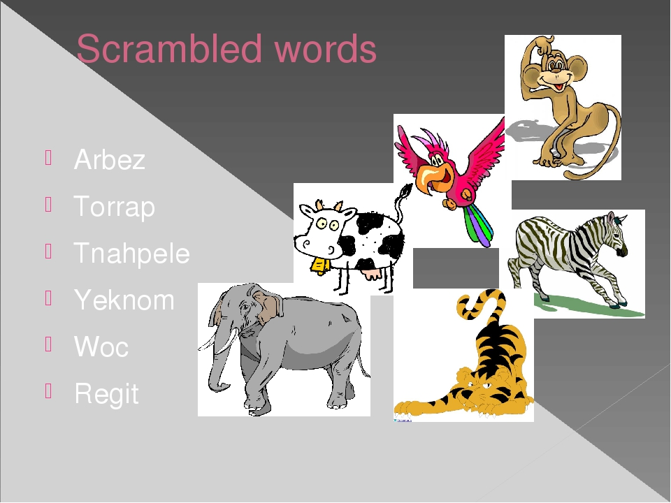 Scrambled words Arbez Torrap Tnahpele Yeknom Woc Regit