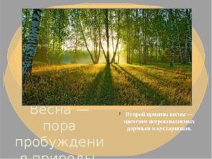 Весна — пора пробуждения природы. По календарю весна начинается 1 марта. В пр