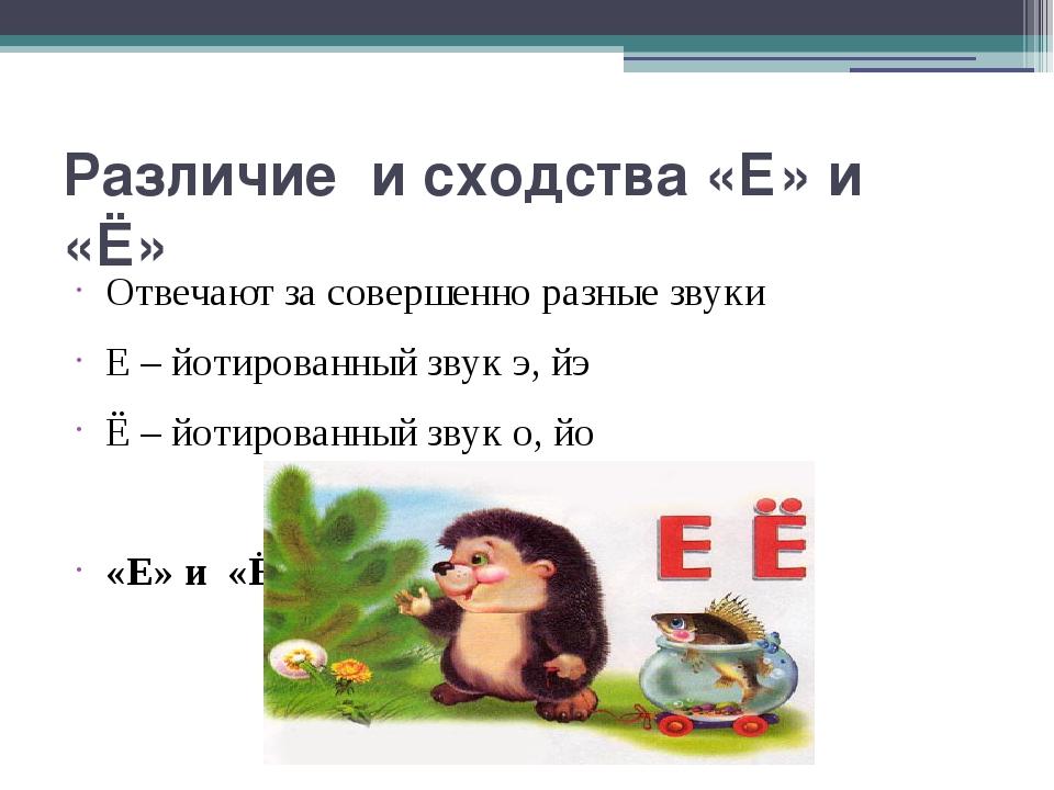 Различие и сходства «Е» и «Ё» Отвечают за совершенно разные звуки Е – йотиров...