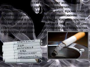У курящего подростка происходят изменения чувствительности органов восприяти