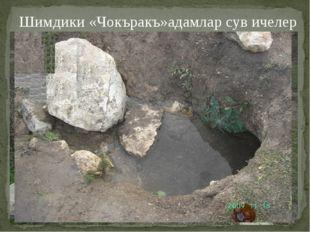 Шимдики «Чокъракъ»адамлар сув ичелер