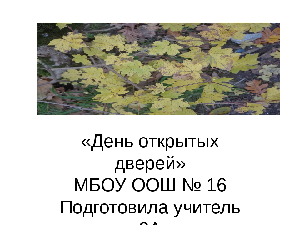 «День открытых дверей» МБОУ ООШ № 16 Подготовила учитель 3А Хачатурян Ж. Г.