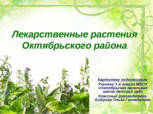 Лекарственные растения Октябрьского района Картотеку подготовили Ученики 3-А