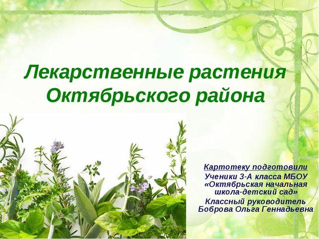 Лекарственные растения Октябрьского района Картотеку подготовили Ученики 3-А...
