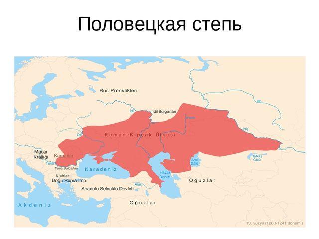Половецкая степь