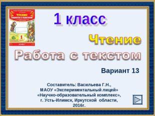 Вариант 13 Составитель: Васильева Г.Н., МАОУ «Экспериментальный лицей» «Научн