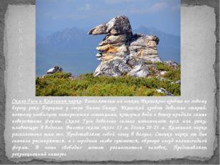 Скала Гусь и Каменная чарка. Расположены на сопках Икатского хребта по левому