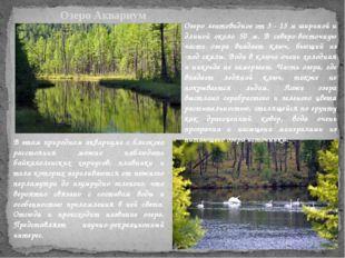 . Озеро Аквариум Озеро лентовидное от 3 - 15 м шириной и длиной около 50 м. В