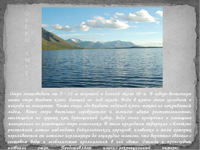 Озеро лентовидное от 3 - 15 м шириной и длиной около 50 м. В северо-восточну...