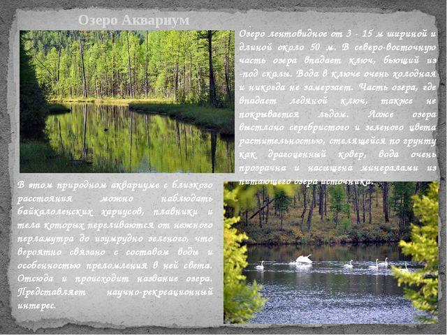 . Озеро Аквариум Озеро лентовидное от 3 - 15 м шириной и длиной около 50 м. В...