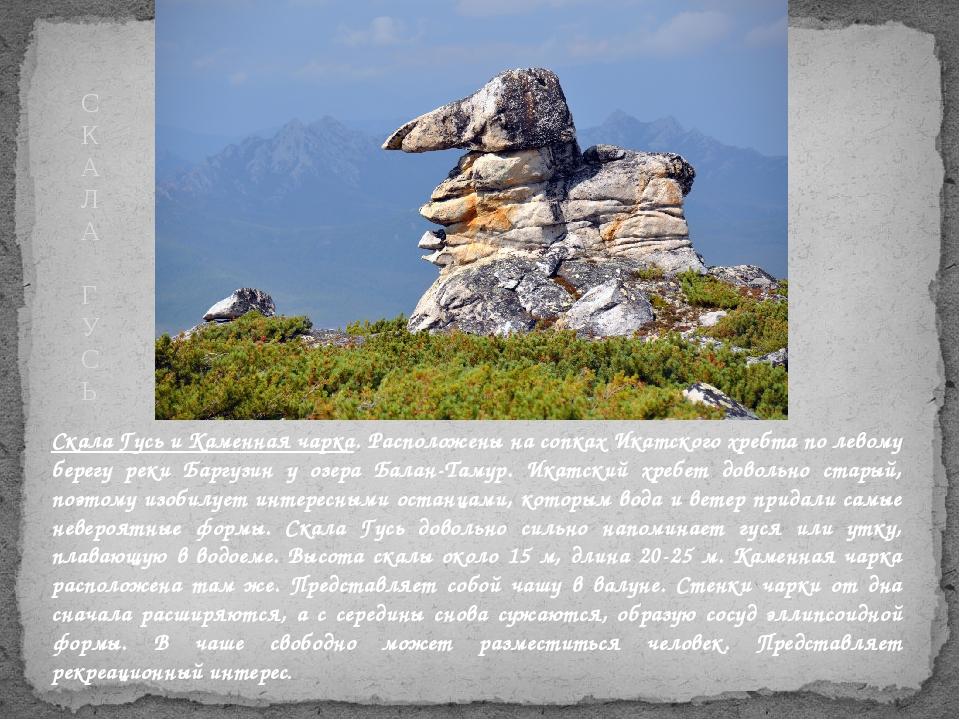 Скала Гусь и Каменная чарка. Расположены на сопках Икатского хребта по левому...