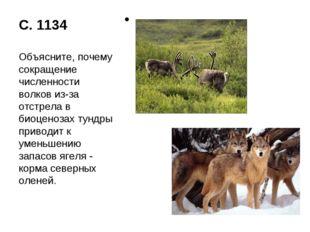 С. 1134 Объясните, почему сокращение численности волков из-за отстрела в биоц