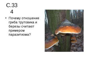 С.334 Почему отношение гриба трутовика и березы считают примером паразитизма?