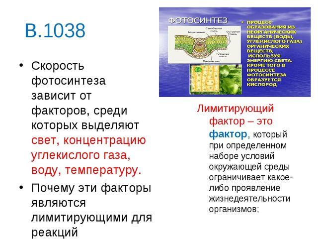 В.1038 Скорость фотосинтеза зависит от факторов, среди которых выделяют свет,...