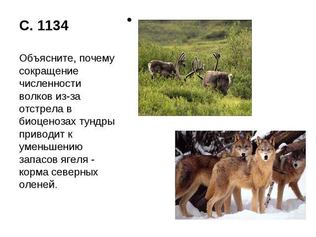 С. 1134 Объясните, почему сокращение численности волков из-за отстрела в биоц...