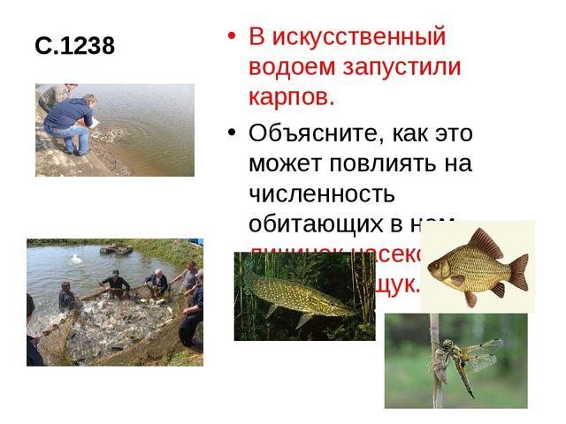 С.1238 В искусственный водоем запустили карпов. Объясните, как это может повл...