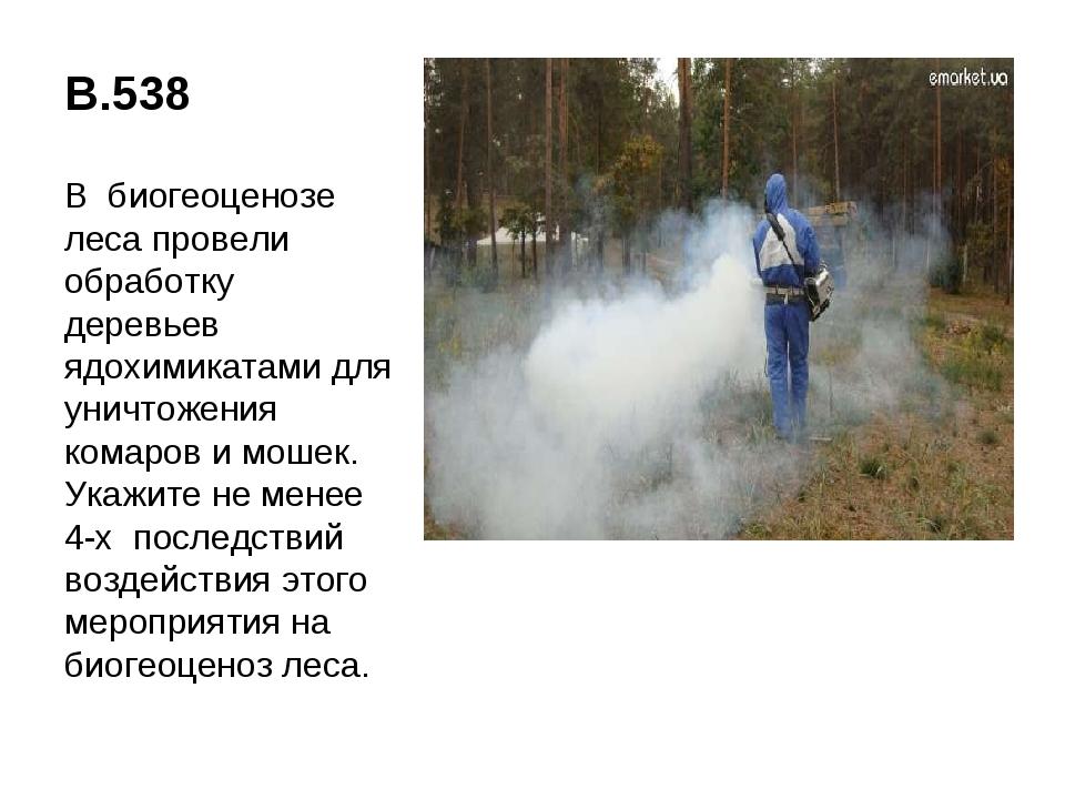 В.538 В биогеоценозе леса провели обработку деревьев ядохимикатами для уничто...