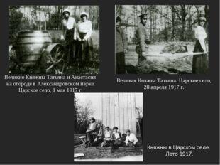 Княжны в Царском селе. Лето 1917. Великая Княжна Татьяна. Царское село, 28 ап