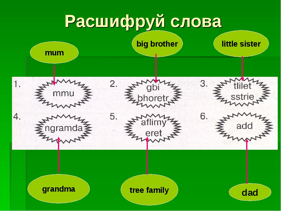 Расшифруй слова mum grandma big brother tree family little sister dad