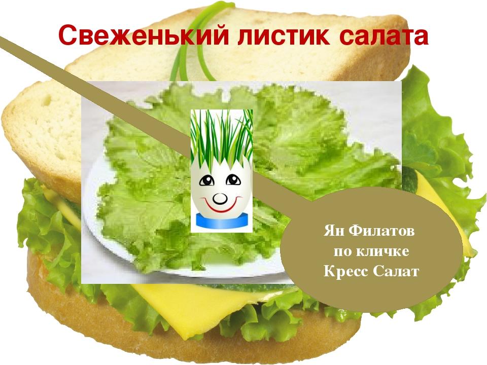Свеженький листик салата Ян Филатов по кличке Кресс Салат