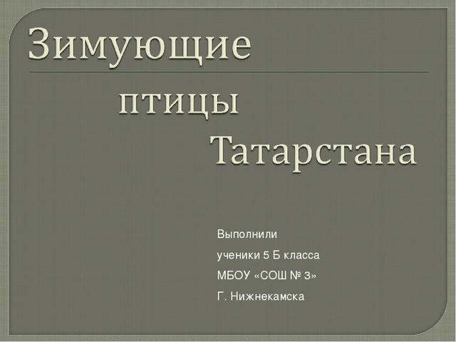 Выполнили ученики 5 Б класса МБОУ «СОШ № 3» Г. Нижнекамска