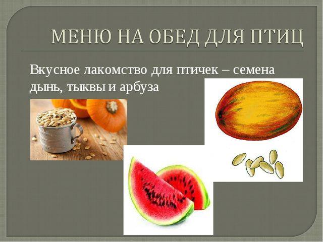 Вкусное лакомство для птичек – семена дынь, тыквы и арбуза