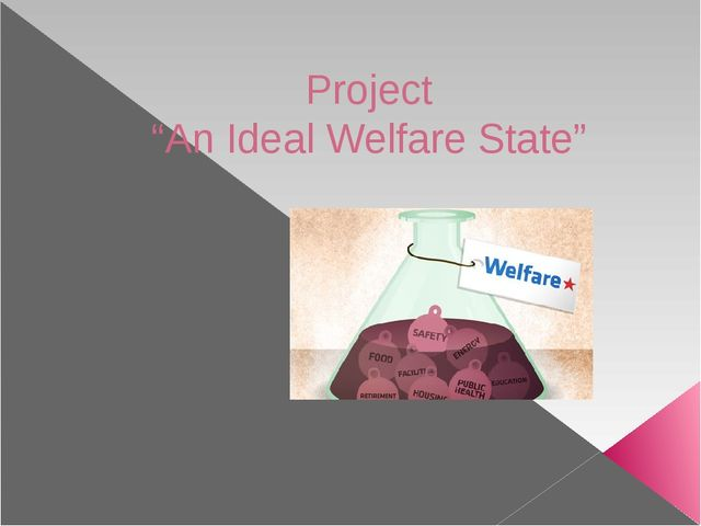 """Project """"An Ideal Welfare State"""""""