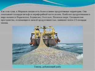 Как и на суше, в Мировом океане есть более и менее продуктивные территории. О