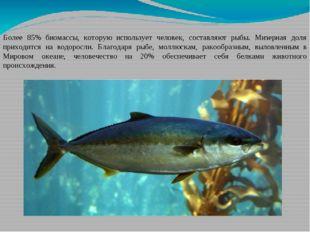 Более 85% биомассы, которую использует человек, составляют рыбы. Мизерная дол