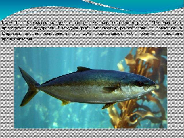 Более 85% биомассы, которую использует человек, составляют рыбы. Мизерная дол...