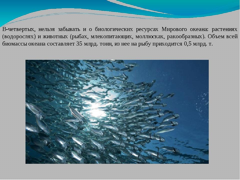 В-четвертых, нельзя забывать и о биологических ресурсах Мирового океана: раст...