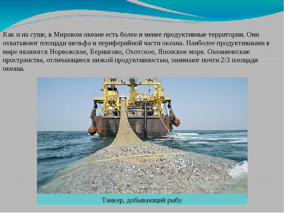 Как и на суше, в Мировом океане есть более и менее продуктивные территории. О...