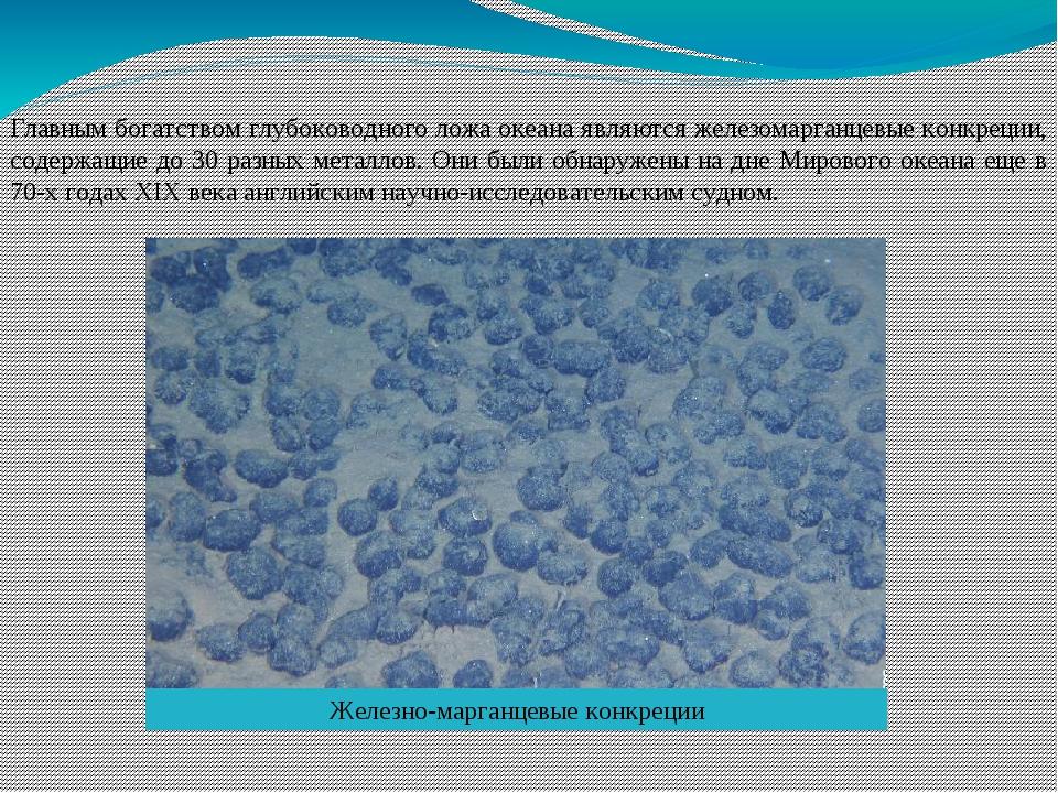 Главным богатством глубоководного ложа океана являются железомарганцевые конк...