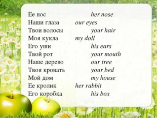 Ее нос			her nose Наши глаза		our eyes Твои волосы		your hair Моя кукла		my d