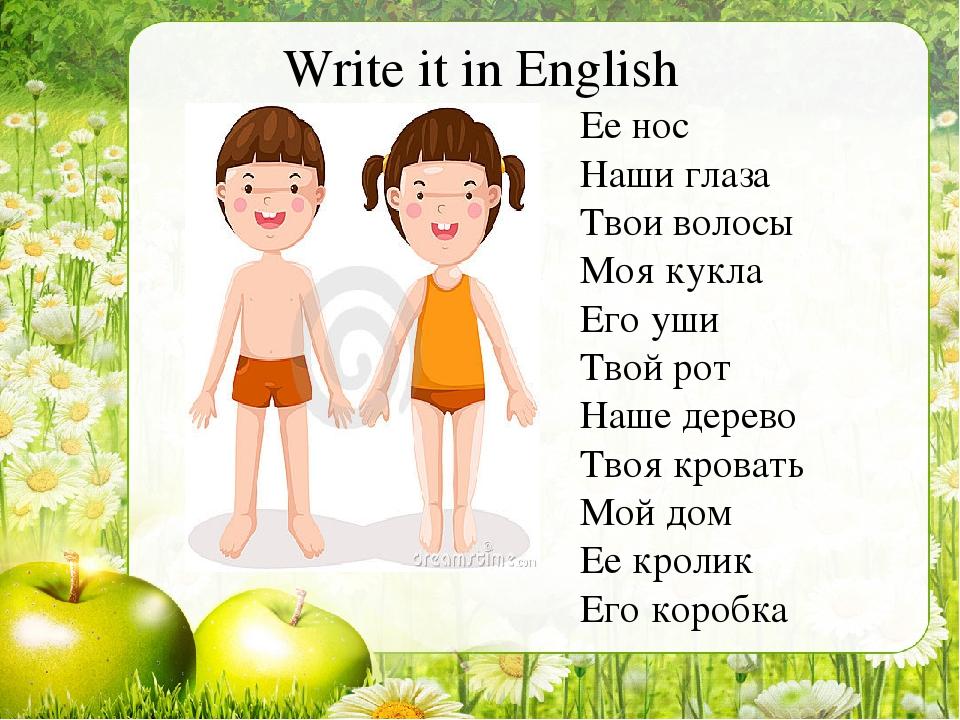 Write it in English Ее нос Наши глаза Твои волосы Моя кукла Его уши Твой рот...