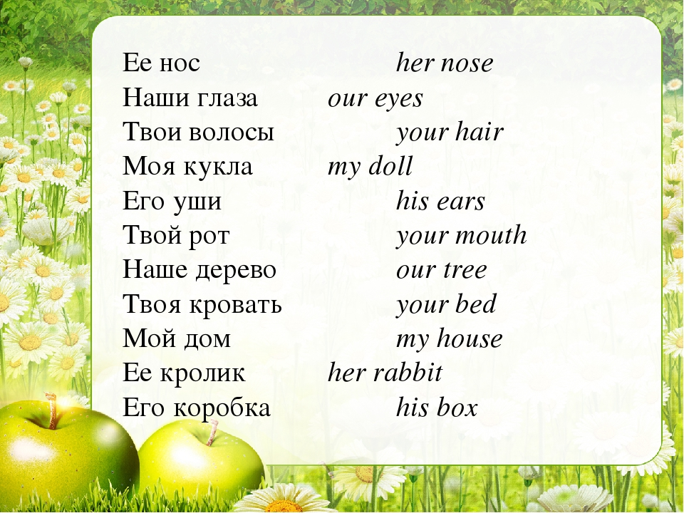 Ее нос			her nose Наши глаза		our eyes Твои волосы		your hair Моя кукла		my d...